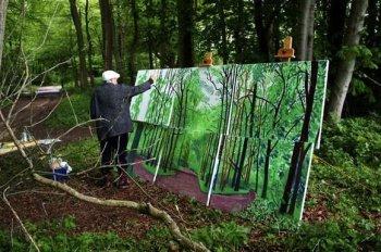 hockney working in woods